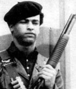 the black panther huey newton essay Huey p newton essay below is an essay on huey p newton from anti essays was one of the two founding members of the original black panther party.
