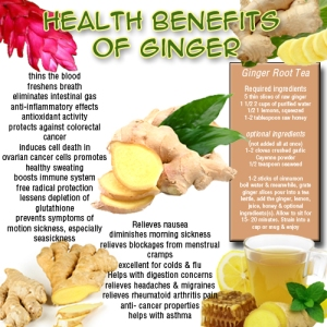 gourmet-farms-health-benefits-of-ginger